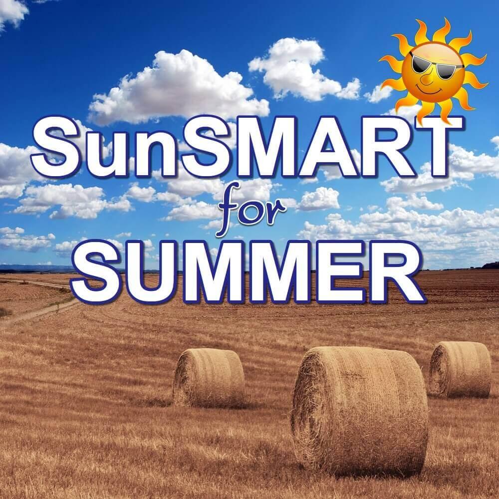 TANDI sun smart interactive elearning training