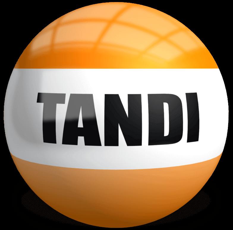 NEW TANDI Logo 784 x 774 76kb
